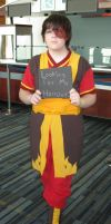 Zuko's Looking For His Honor by craftysorceress