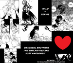 NALU_ZERVIS_Dragneel Brothers Similarities!!! by StarfireGrace1998