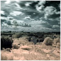 Dutch Landscape 2 IR by AD-Hero