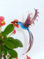 Hummingbird by Glasmagie