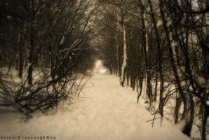 Light At The End by horai