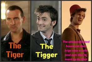 Nine, Ten and Eleven Classification by RedwallChick1303