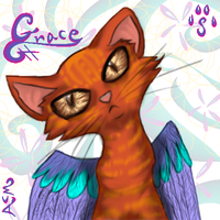 Grace by horselife1236