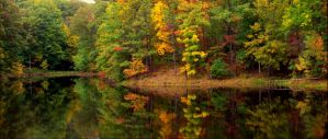 Morrison Lake early fall.img599 by harrietsfriend