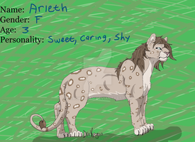 Aierth Ref by DracKeagan