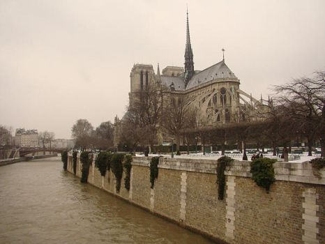 Notre Dame by polexing