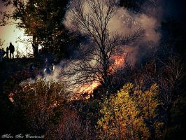 Fire on the Hill by Emagyne