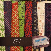 carl-paper street designs by paperstreetdesigns
