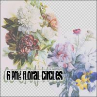 6 Png Floral Circles by mylightbluesky