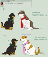 Q + A 10 by Ask2P-Prussdog