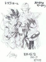 Piccolo, Goku and Vegeta by PookyWooky