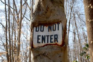 Do Not Enter by timid-wolf