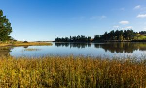 Placid Waters by firouz222