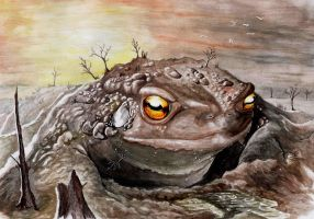 Giant toad by Giric
