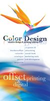 Color Through Design by SuryaKreasi