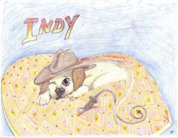 Indy by AmmyWolf95