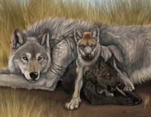 werewolf art family cubs grass