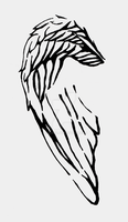 wing as hand drawn and scanned by alx2000
