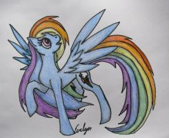 Rainbow Dash by BlueEvelyn