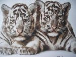 White Tiger Cubs by Starfire-Productions