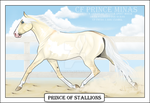 Prince of Stallions by JNFerrigno