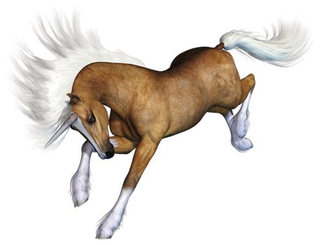 Unicorn 01 PNG Stock by Roy3D