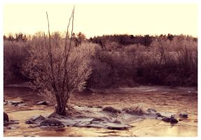 January river by Skycode