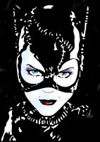 Catwoman - The Cat's Meow by LRitchieInk