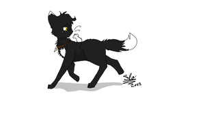 New oc as a cat MAYBE? by The-stray-cat