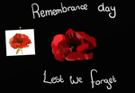 poppy~remembrance day by Kiyoshi11