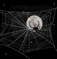 Moonlight upon a spider by sharkaholic