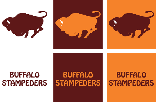 1972_buffalo_stampeders_visual_identity_
