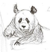 left handed drawing panda by McMuffinNinjaFluffer