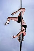 Pole Art - Gemini by h-e-photography
