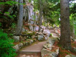 Acadia National Park by Li33i