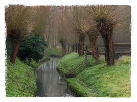 A quiet place by rhipster