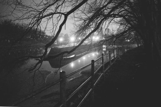 one with a river at night and some branches by Maclunar