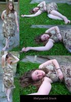Brown Dress Stock II by Melyssah6-Stock