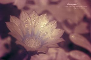 Flower Power in Infra Red by siulzz