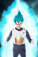 Vegeta SSGSS by SanjiroCosplay