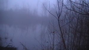 Fog At The Pond 2 Not Edited by yeagerspace