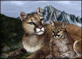 Cougar and Cub - Collaboration by oomu