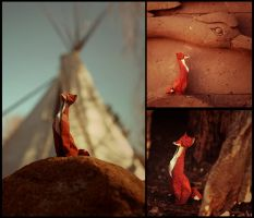 Sitting Fox by FoldedWilderness