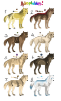 Point Adoptables by TemAdopts