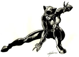 Catwoman by HazelNutsandCream
