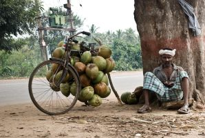 The coconut vendor. by Naxal