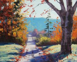 Country Road by artsaus
