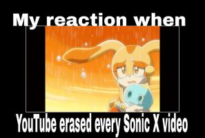 When YouTube Took Down Sonic X by animorphs5678