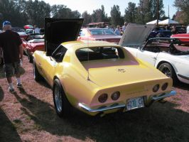 69' Daytona Yellow Stingray C by Eagle07