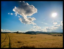 farmland by DanielloPL